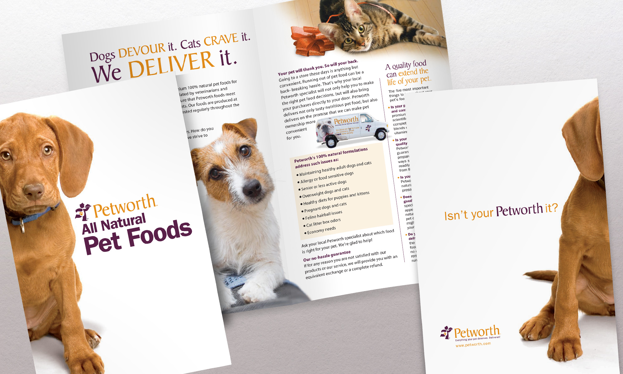 Petworth Food Delivery Brochure
